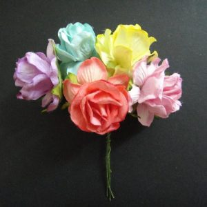 Mixed Colour Tea Roses