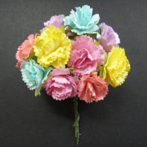 Carnation Mixed Colour Flowers