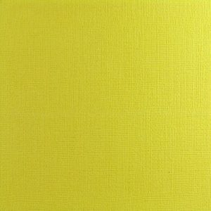 La Carta Cardstock – Avocado