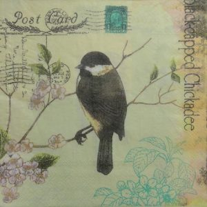 Black Capped Chickadee Decoupage Napkin