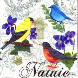Birds Decoupage Napkin