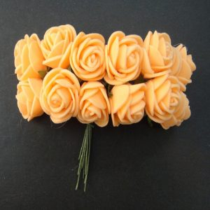 Peach Foam Rose Flowers