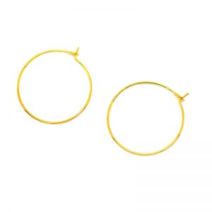 Gold Earring Hoops