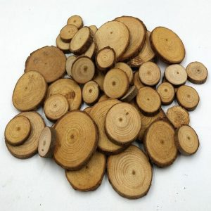 Mini Natural Pine Wood Slice