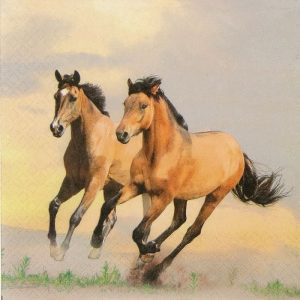 Two Horses Decoupage Napkin