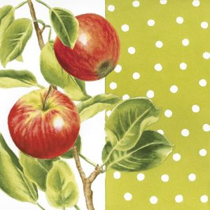 Apple With Leaf Decoupage Napkin