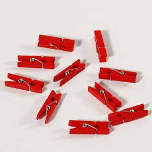 Mini Wooden Clothespin Clips