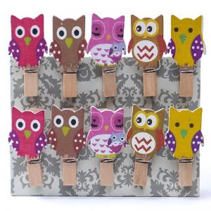 Owl Wooden Clothespin Clips