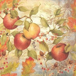 Apple  Decoupage Napkin