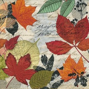 Colourful Maple Leaves  Decoupage Napkin