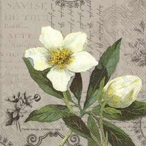 Five Petal White Flower Decoupage Napkin