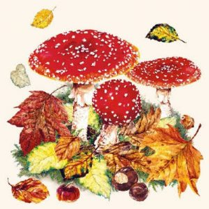 Red Mushroom With Leaf Decoupage Napkin