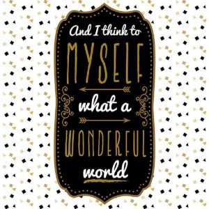 Myself What A Wonderful World  Decoupage Napkin