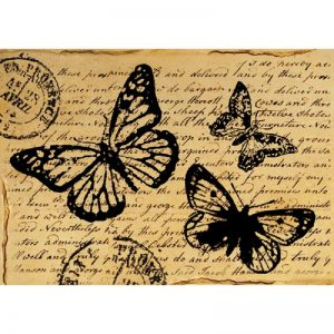 Stamperia Rice Paper - Butterfly With Words
