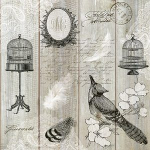 Vintage Birds And Cages Decoupage Napkin