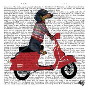A Dog Ride In Scooter Decoupage Napkin