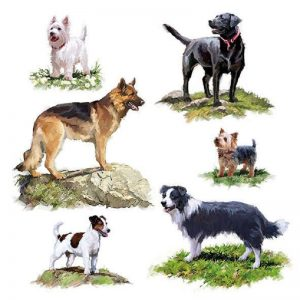 The Dogs Decoupage Napkin