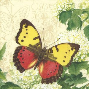 Butterfly With Green Leaf Decoupage Napkin