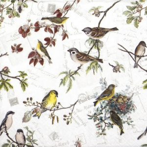 Birds Family Decoupage Napkin