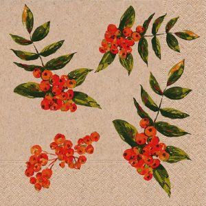Berry With Leaves Decoupage Napkin