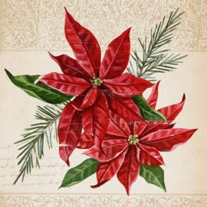 Red Poinsettia With Green Leaf Decoupage Napkin