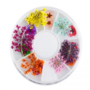 Dried Flowers In Round Shape Box