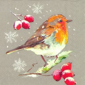 Robin With Cherry Decoupage Napkin