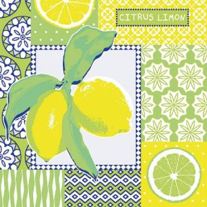 Citrus Lime Decoupage Napkin
