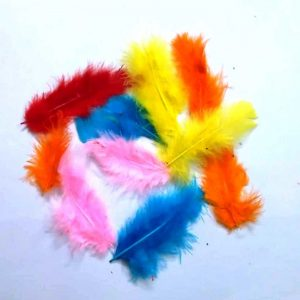 Pack of Mixed Size And Colour Feathers