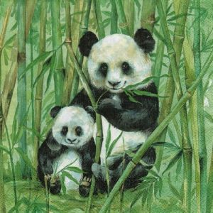 Mama and Baby Panda Decoupage Napkin