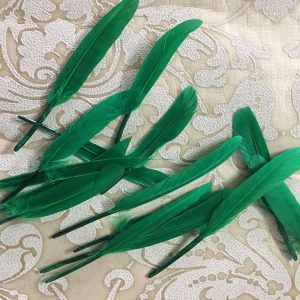 Green Tall Feathers