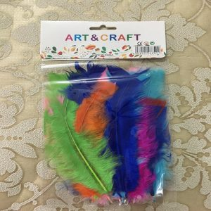 Mixed Colour Stick Feather Pack