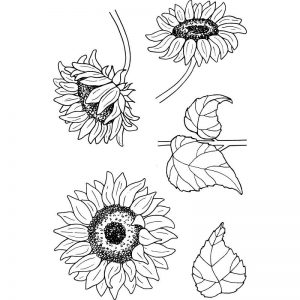 Jane's Doodles Clear Stamps - Sun Flowers