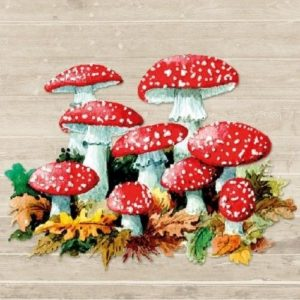 Mushrooms Decoupage Napkin