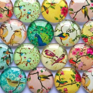 Mixed Design Birds Round Glass Cabochons