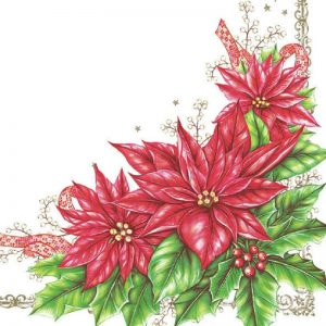 Poinsettia In White Background Decoupage Napkin