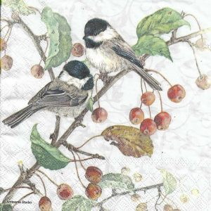 Two Birds Sitting On A Branch Decoupage Napkin