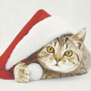 Cat In Christmas Cap Decoupage Napkin