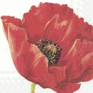 Red Flower In White Background Decoupage Napkin