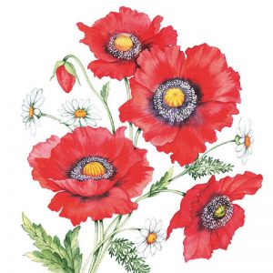 Red Poppy Painted Flower Decoupage Napkin
