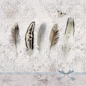 Pastel Colour Feathers Decoupage Napkin