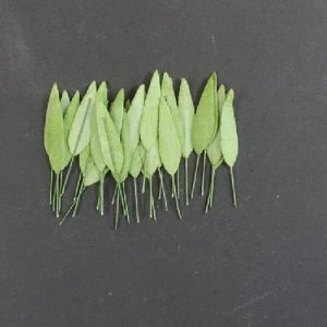 Craft Artificial Small Line Type Leaf Style - Green- LBB02