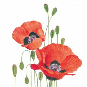 Orange Poppies Decoupage Napkin