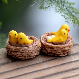 Miniature Birds' Nest