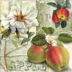 Apple With White Flower Decoupage Napkin