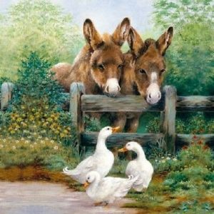 Donkey And Duck In Garden Decoupage Napkin