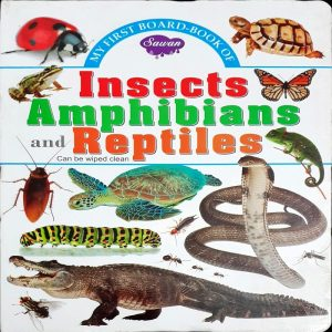My First Board Book of Insects Amphibians & Reptiles by Manoj Pub. Ed. Borad